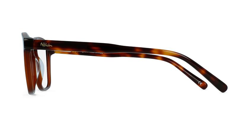 Óculos graduados homem JAROD BR (tchin-Tchin +1€) castanho - Vista lateral