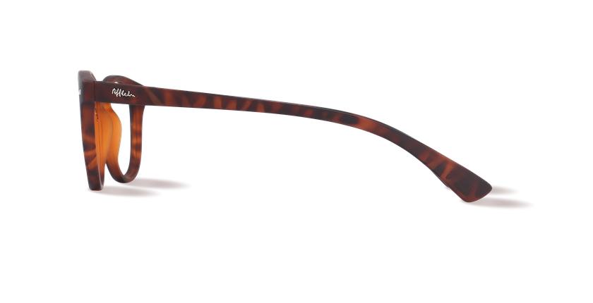 Óculos graduados MOD01P tartaruga  - Vista lateral
