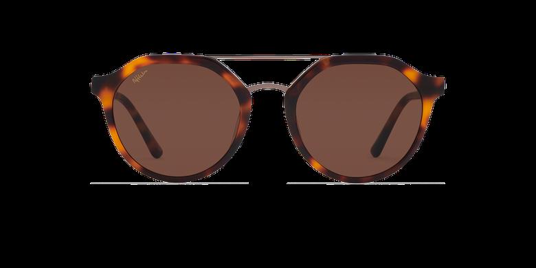 Óculos de sol JADEN SAM tartaruga