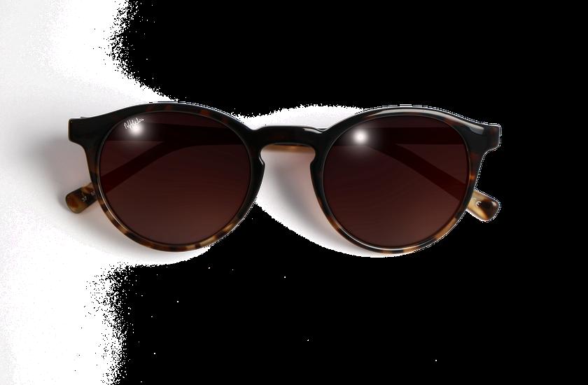 Gafas de sol mujer CARMEN carey - danio.store.product.image_view_face