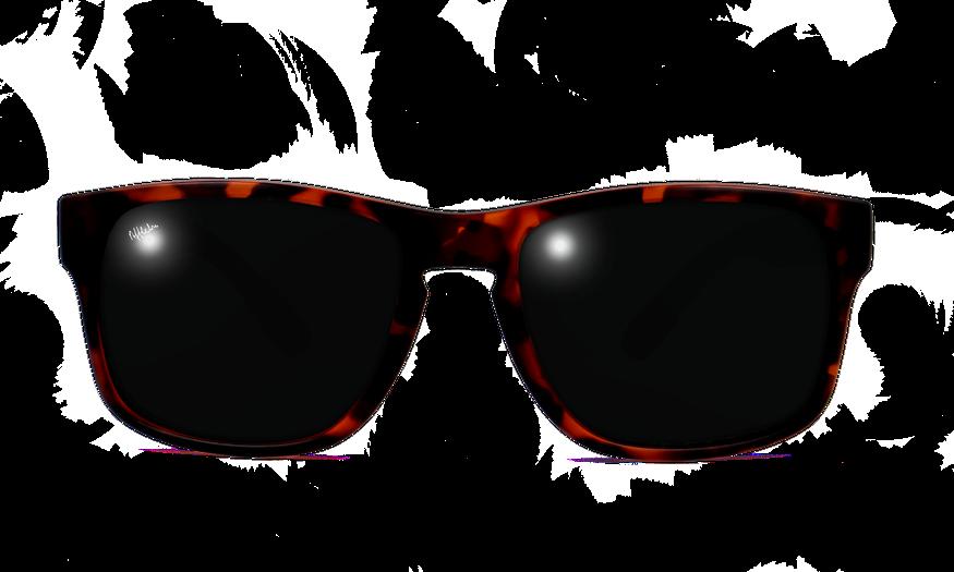 Lunettes de soleil homme DYLAN POLARIZED écaille