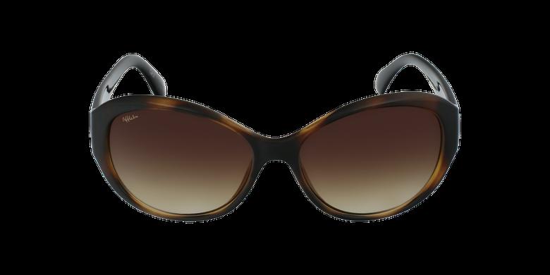 Óculos de sol senhora MARTINA TO tartaruga /preto