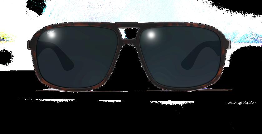Lunettes de soleil homme ANZIO POLARIZED écaille - Vue de face