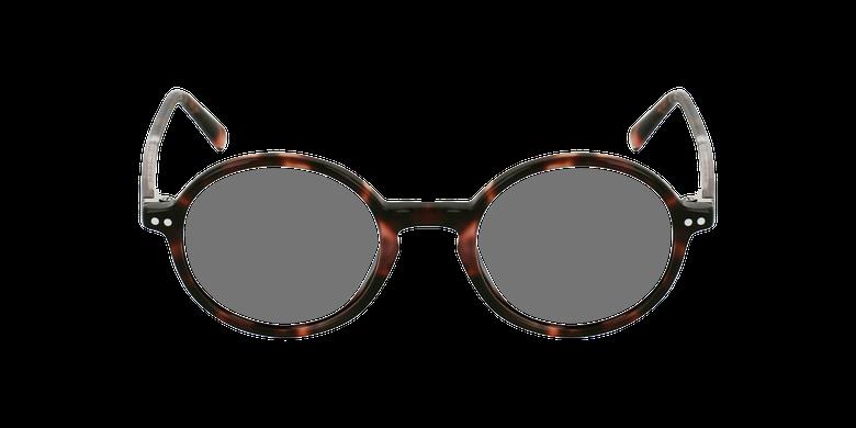 Óculos graduados BERLIOZ PK tartaruga /rosa
