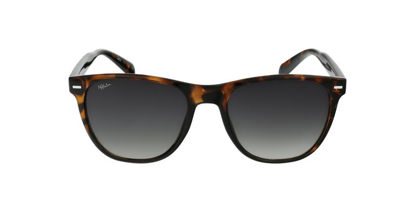 Óculos de sol MIRAMAR TO tartaruga/castanho - Vista de frente