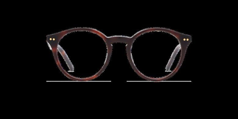 Óculos graduados ANIS (Tchin-Tchin +1€) castanho