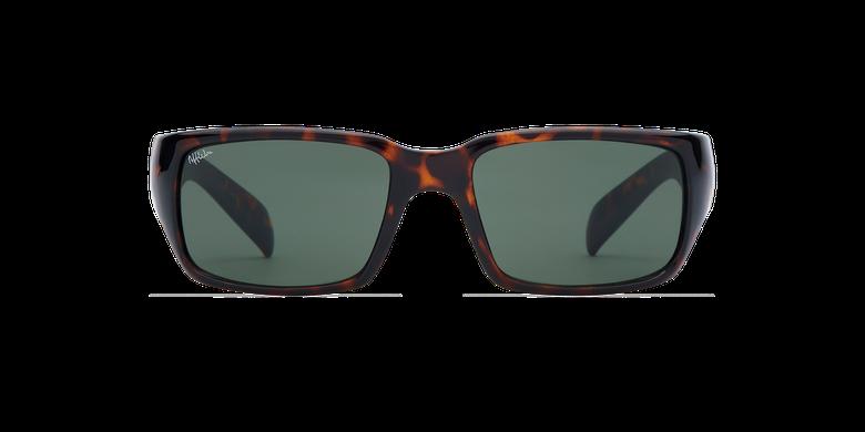 Óculos de sol homem JEREZ TO tartaruga