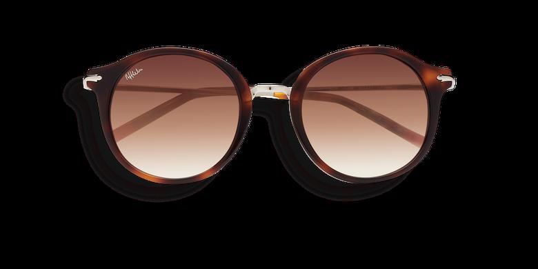 Óculos de sol senhora MINILIA tartaruga