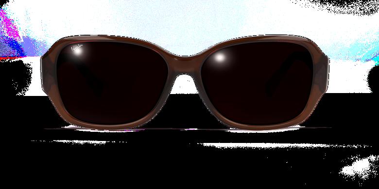 Óculos de sol senhora EVE SAF castanho