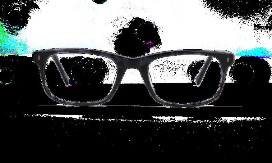 Lunettes de vue homme PARKLANE écaille