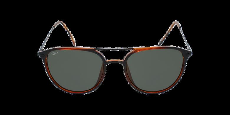 Óculos de sol homem SALCEDO TO tartaruga