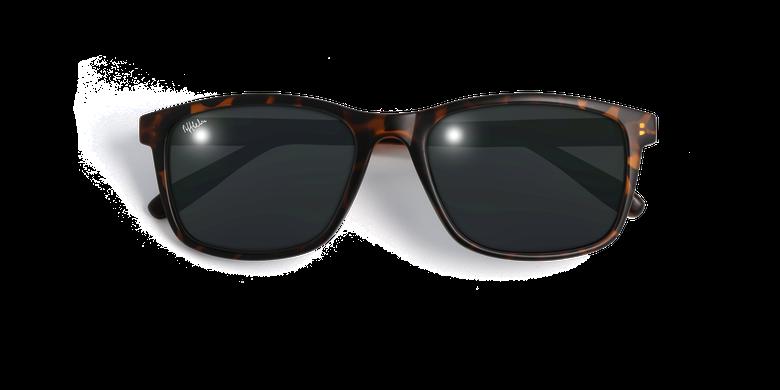 Gafas de sol hombre HILARIO carey