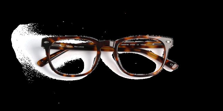 Óculos graduados homem LUCAS violeta