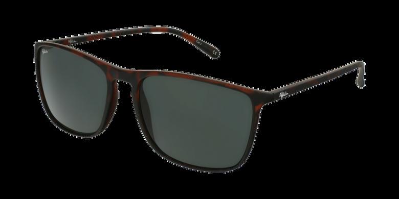 Óculos de sol homem PARDO TO tartaruga