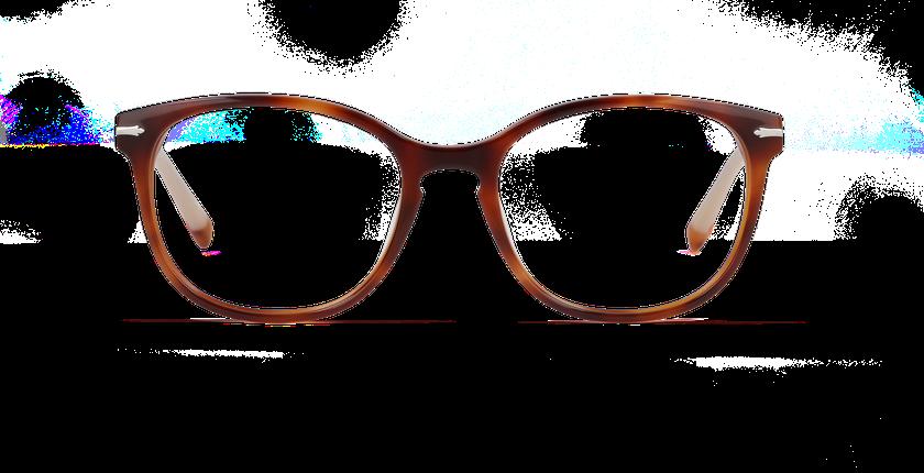 Lunettes de vue femme WHITEHAVEN écaille - vue de face
