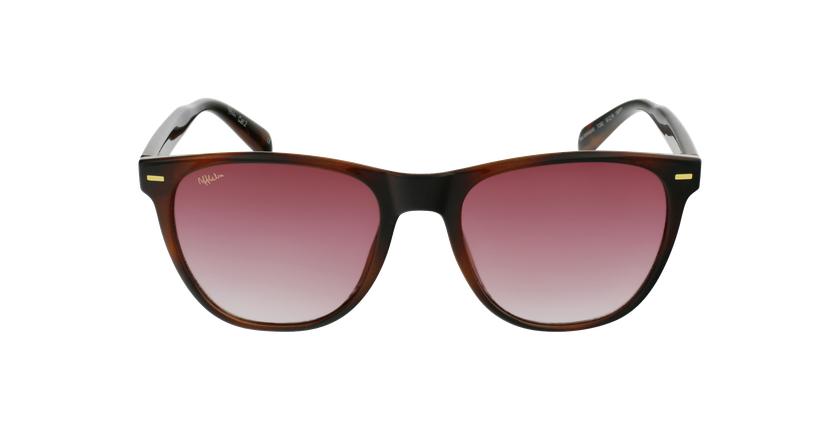 Óculos de sol MIRAMAR TO2 tartaruga/castanho - Vista de frente