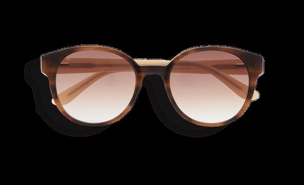 Lunettes de soleil femme ABIGAIL marron - danio.store.product.image_view_face