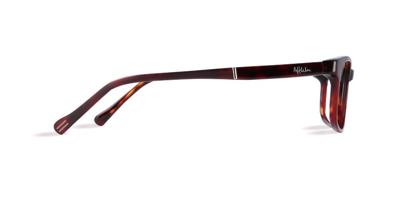 Óculos graduados homem PARKLANE tartaruga /vermelho - Vista lateral
