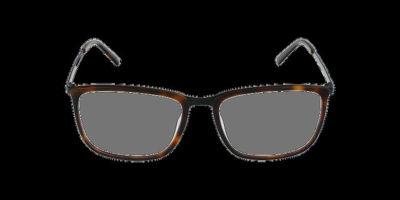 Óculos graduados homem WAGNER TO tartaruga