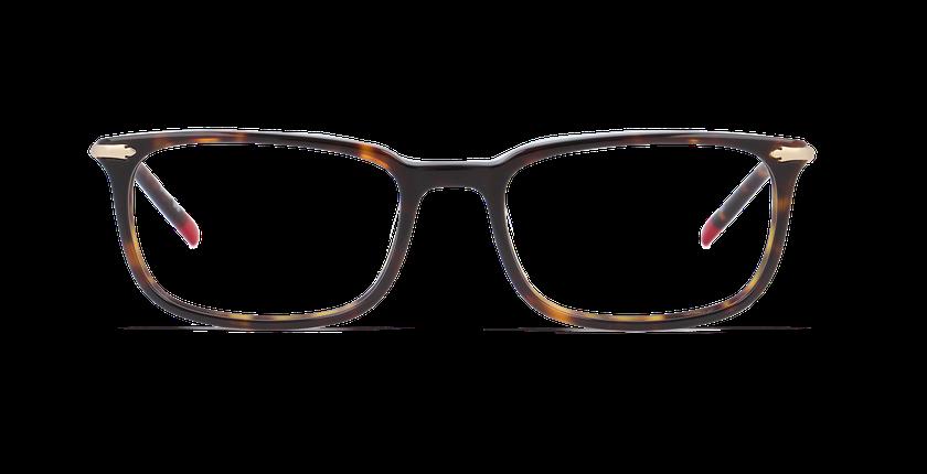 Lunettes de vue homme DUDLEY écaille - vue de face