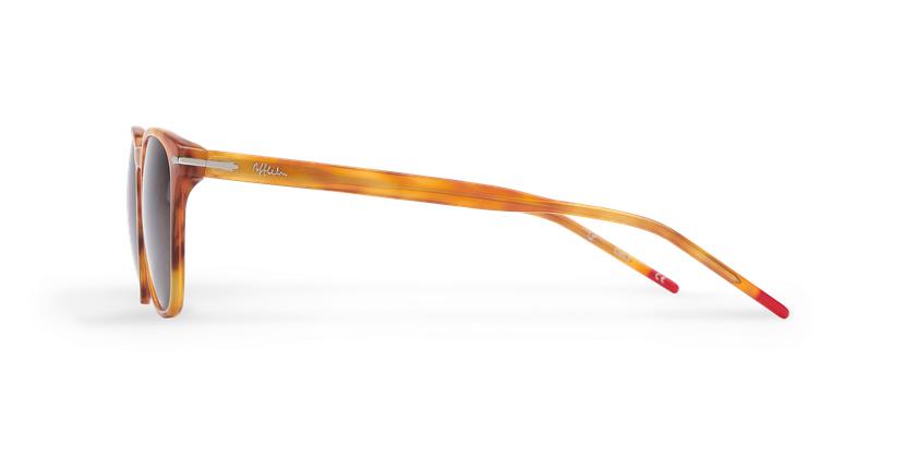 Óculos de sol homem HUNTER HV tartaruga  - Vista lateral