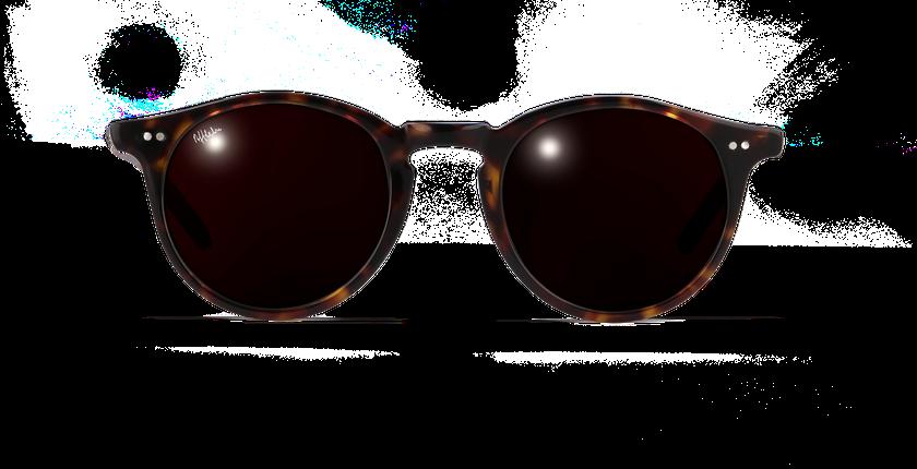 Lunettes de soleil homme MELBOURNE écaille - vue de face