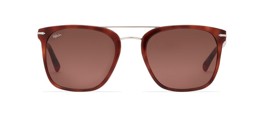 Óculos de sol homem DARWIN tartaruga  - Vista de frente