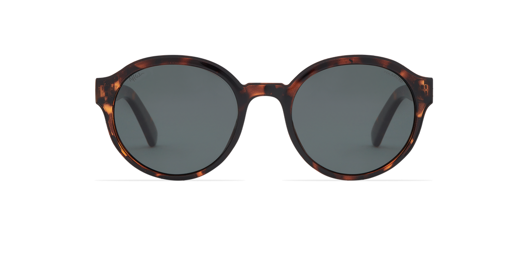 FARA POLARIZED