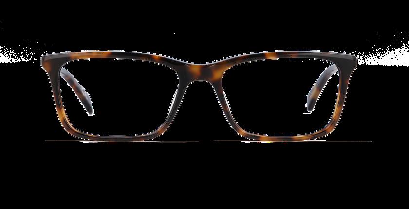 Lunettes de vue homme CALVIN KLEIN JEANS écaille - vue de face