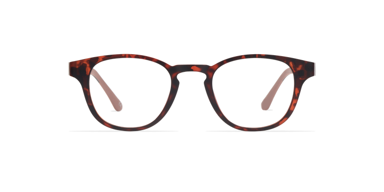 Óculos graduados homem MAGIC 03 tartaruga