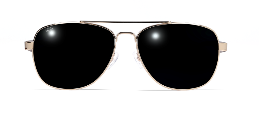 Lunettes de soleil homme ESTEBAN doré - vue de face
