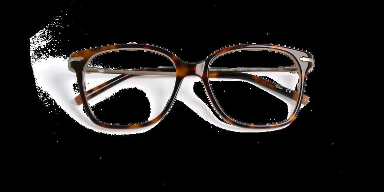 Gafas graduadas mujer CLIFDEN carey/dorado