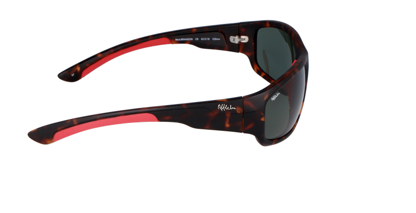 BRANDON POLARIZED