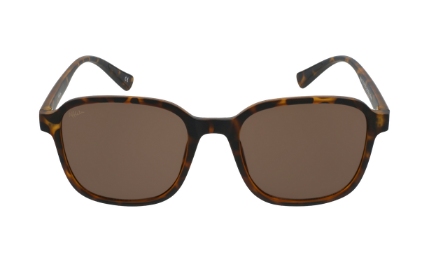 Gafas de sol SOLFEO carey - danio.store.product.image_view_face