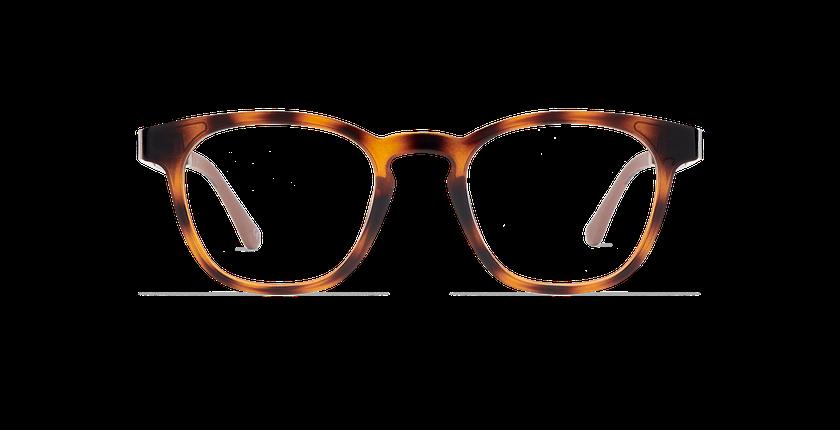Lunettes de vue MAGIC 15 écaille/écaille brillant - Vue de face