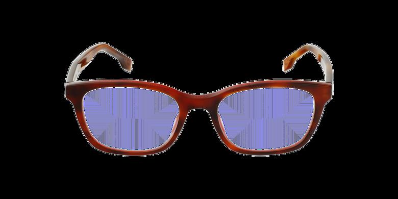 Lunettes de vue femme DIORETOILE2 écaille