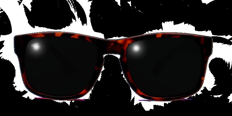 Gafas de sol hombre DYLAN POLARIZED carey