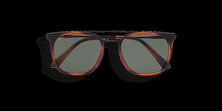 Óculos de sol homem ELVIO (Tchin-Tchin +1€) tartaruga