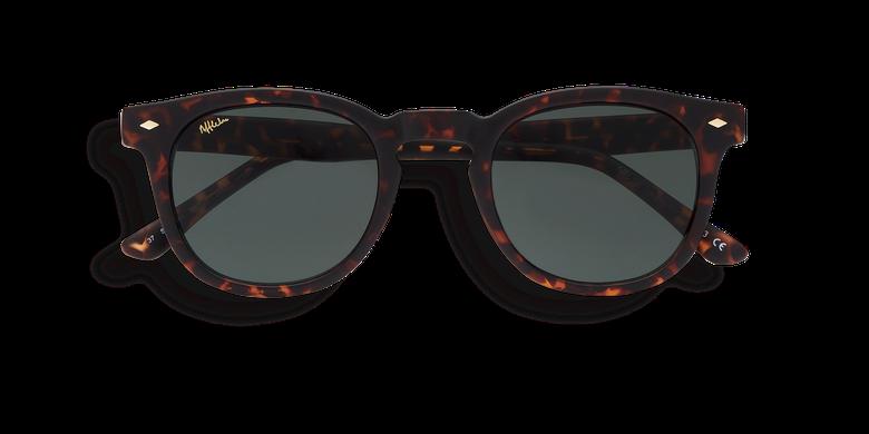 Óculos de sol homem HARBOR tartaruga