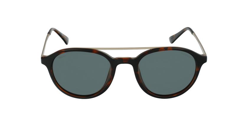 Óculos de sol GLENN TO tartaruga /dourado - Vista de frente