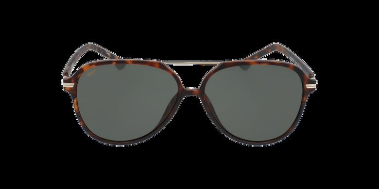 Óculos de sol homem BASAURI TO tartaruga /dourado