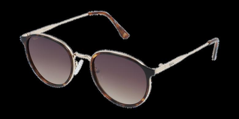Óculos de sol AVILES TO tartaruga/dourado
