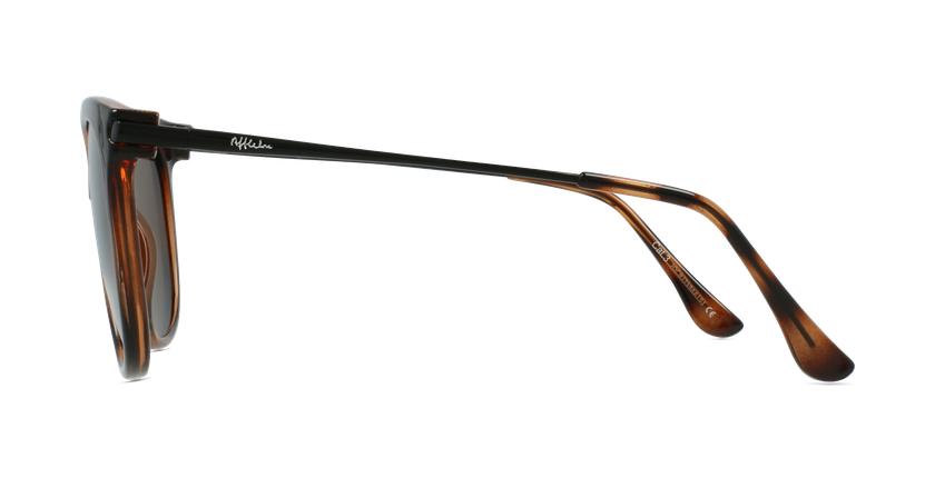 Óculos de sol senhora ALCALA TO tartaruga /preto - Vista lateral