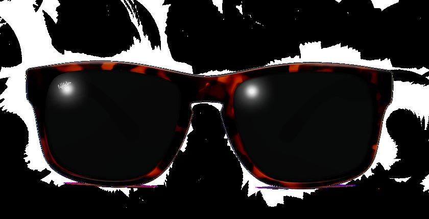 Afflelou Gafas Carey Polarized De Sol 2d9ehi Dylan XTukOPZi
