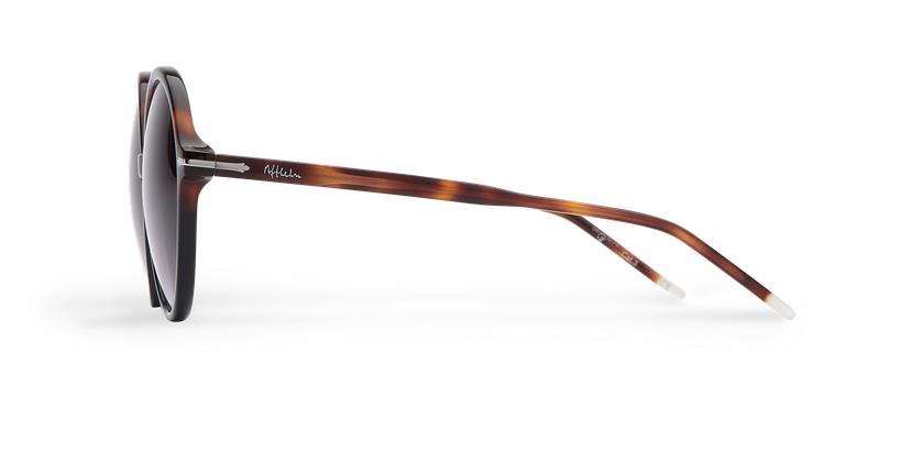Óculos de sol senhora KENDAL TOBK tartaruga /preto - Vista lateral