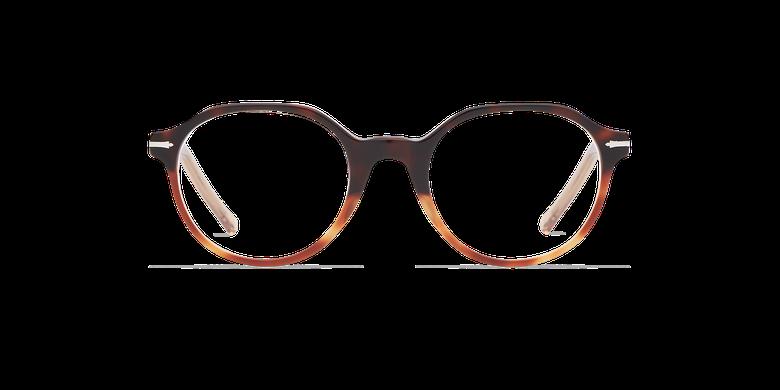 Óculos graduados homem MOREZ tartaruga /castanho
