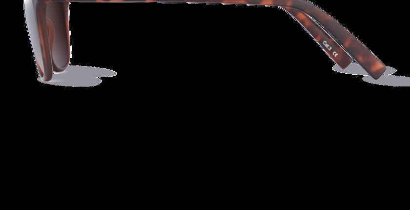 Lunettes de soleil homme VERACRUZ écaille - vue de côté