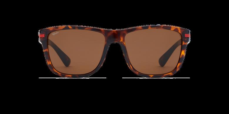 Óculos de sol homem DIEGO TO (TCHIN-TCHIN +1€) tartaruga