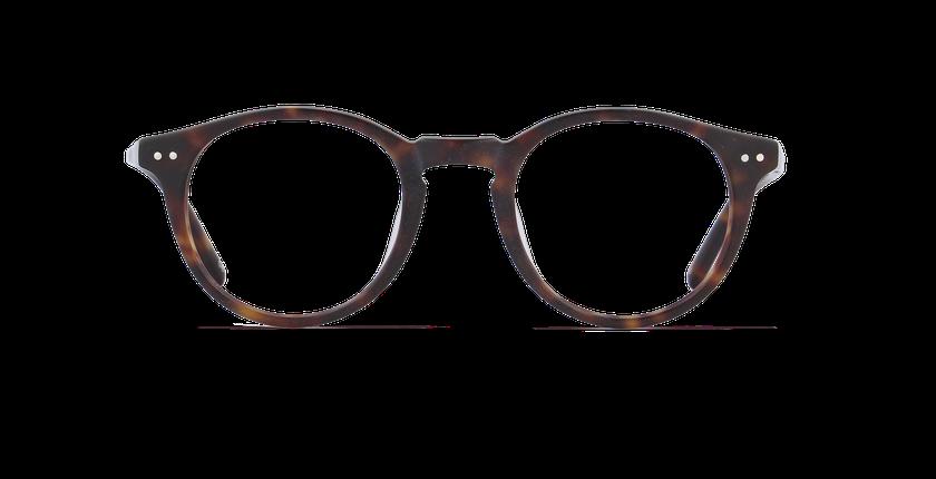 Lunettes de vue enfant BRISBANE écaille - vue de face