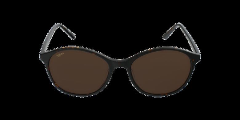 Óculos de sol senhora COLINE TO tartaruga